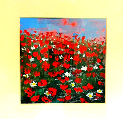 Magheramorne-Poppies-